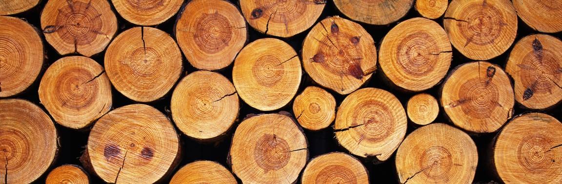 Holz02Colourbox